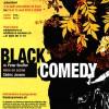 Black Comedy- Théâtre