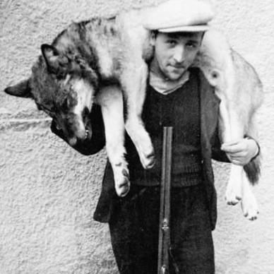 Albin Brunner portant le loup d'Eischoll.jpeg